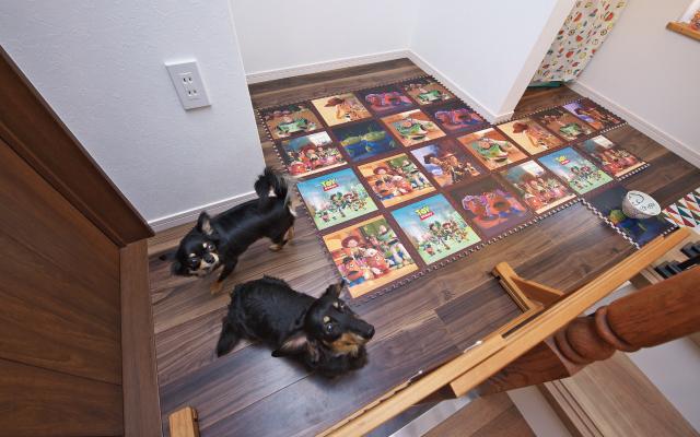愛犬と気持ちよく暮らせる家の画像